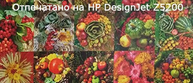 HP DesignJet Z5200ps PhotoPrinter PostScript 1118 мм. Качество и долговечность