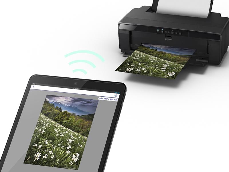 цветной принтер для печати фотографий отзывы